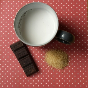 Chunks of Hasslacher's cocoa with sugar and a mug of milk